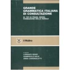 Grande grammatica italiana di consultazione III