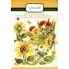 Notes - Girasoli